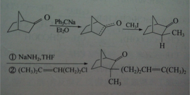 碳原子上的烃基化反应配图2